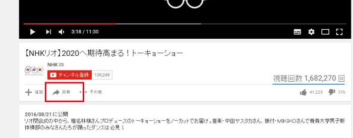 wp_youtube02