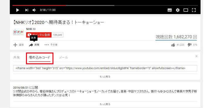 wp_youtube03